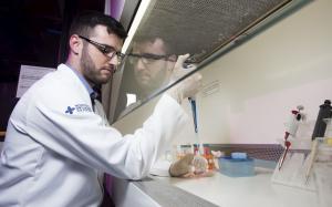 Laboratório de Farmacologia Aplicada, Farmácia, câncer, pesquisa