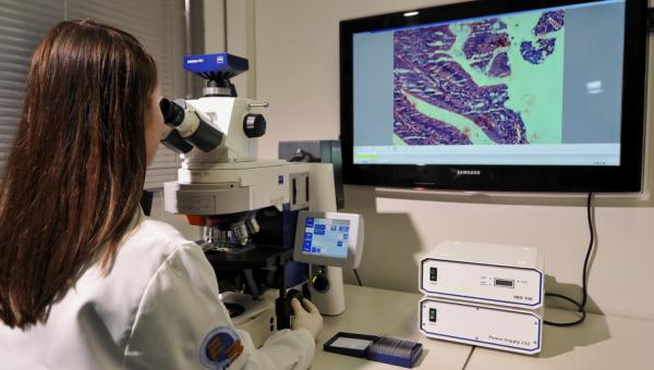 Forte produção intelectual é destaque da Pós de Biologia Molecular e Celular