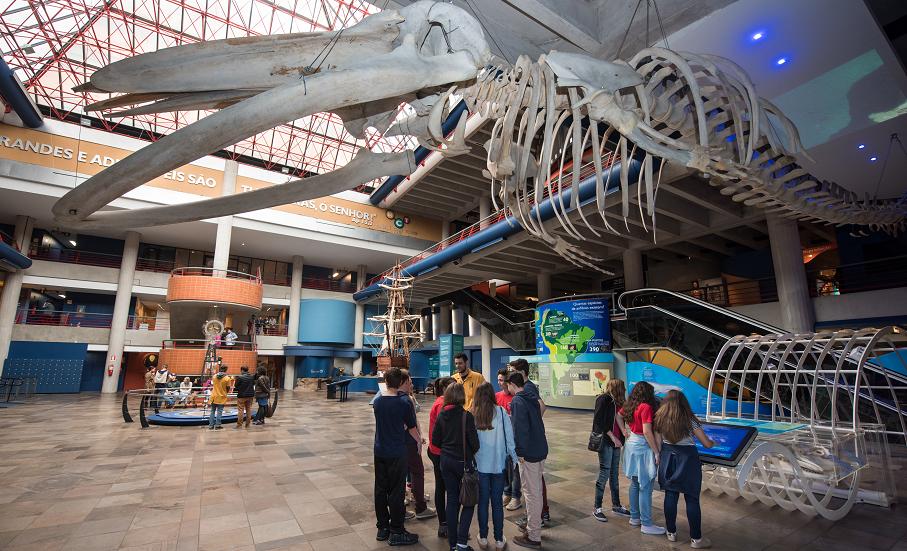 museu, mct, museu de ciência e tecnologia