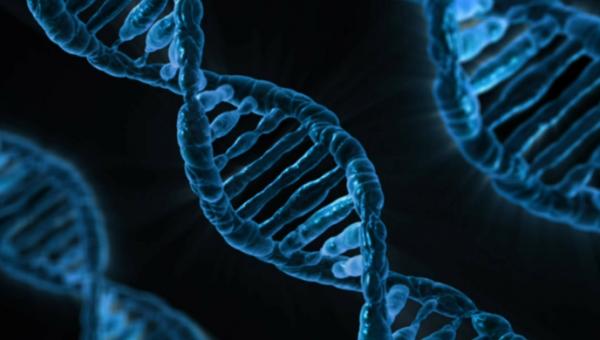 Especialização estuda casos do Biodireito