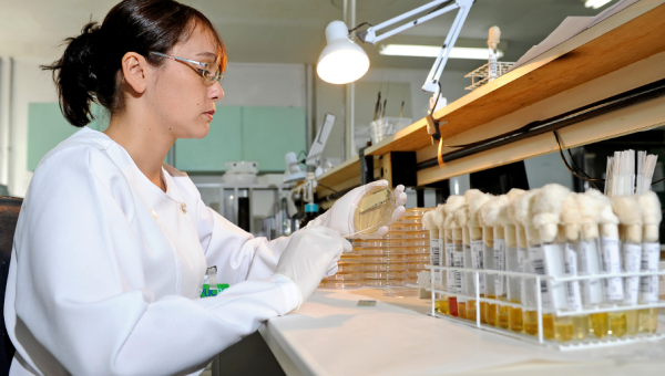Mercado aquecido em Biomedicina