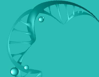 II Simpósio de Pesquisa do Programa de Pós-Graduação em Biologia Celular e Molecular da PUCRS