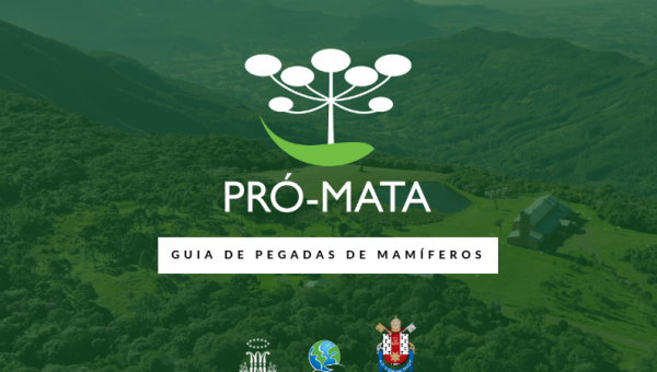 Institute for the Environment releases Reference Guide for Pró-Mata Mammal Footprints